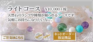 ライトコース ¥10500