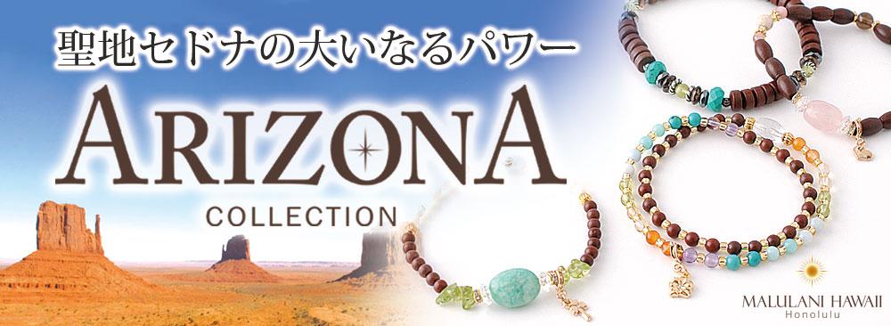 Arizona2017