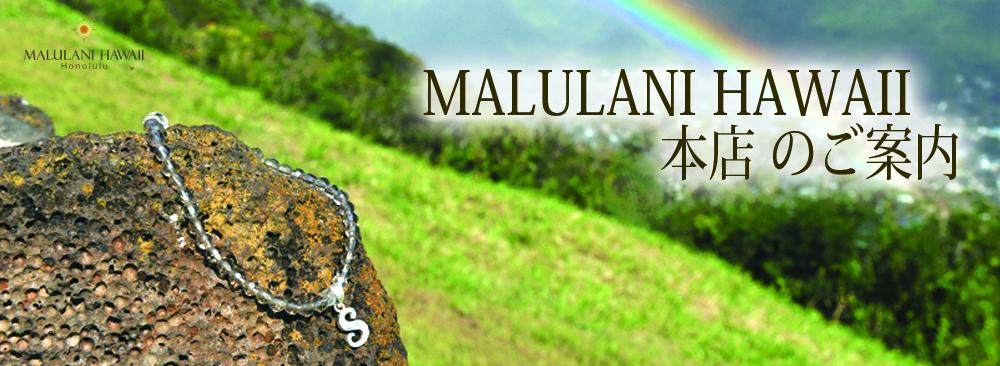 tb_hawaiian_mainpage