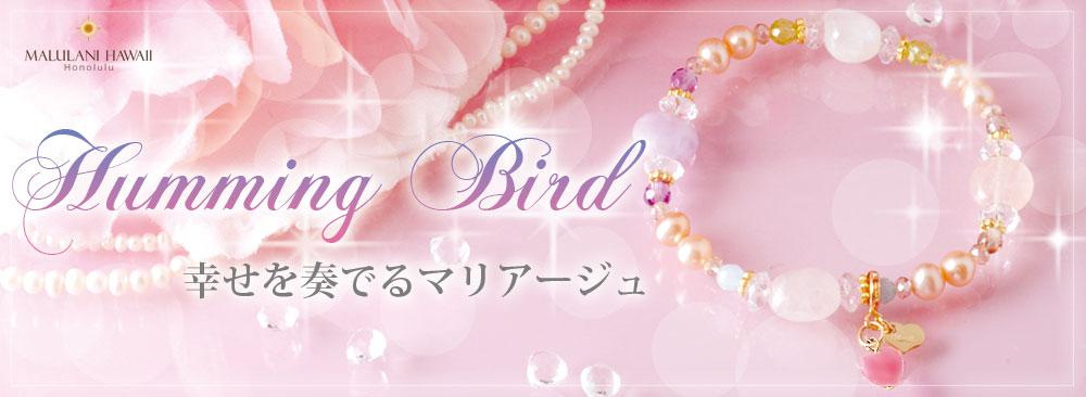 tb_Humming Bird