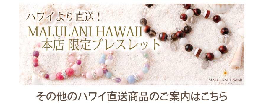 page_hawaii_order_04