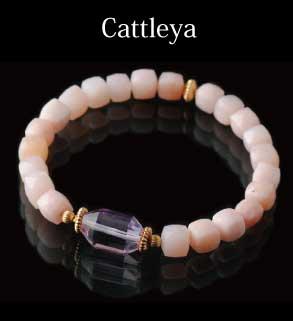 Cattleya−カトレア−